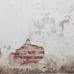 Jak usunąć grzyba ze ścian?